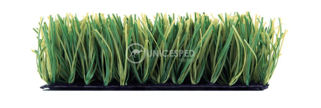 concave grass