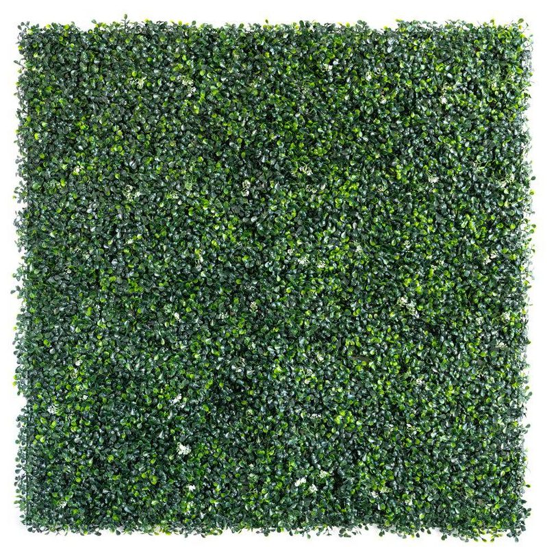 Boxwood Light Green with Flower